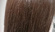 気になる表面のパヤパヤした毛は治るのか??